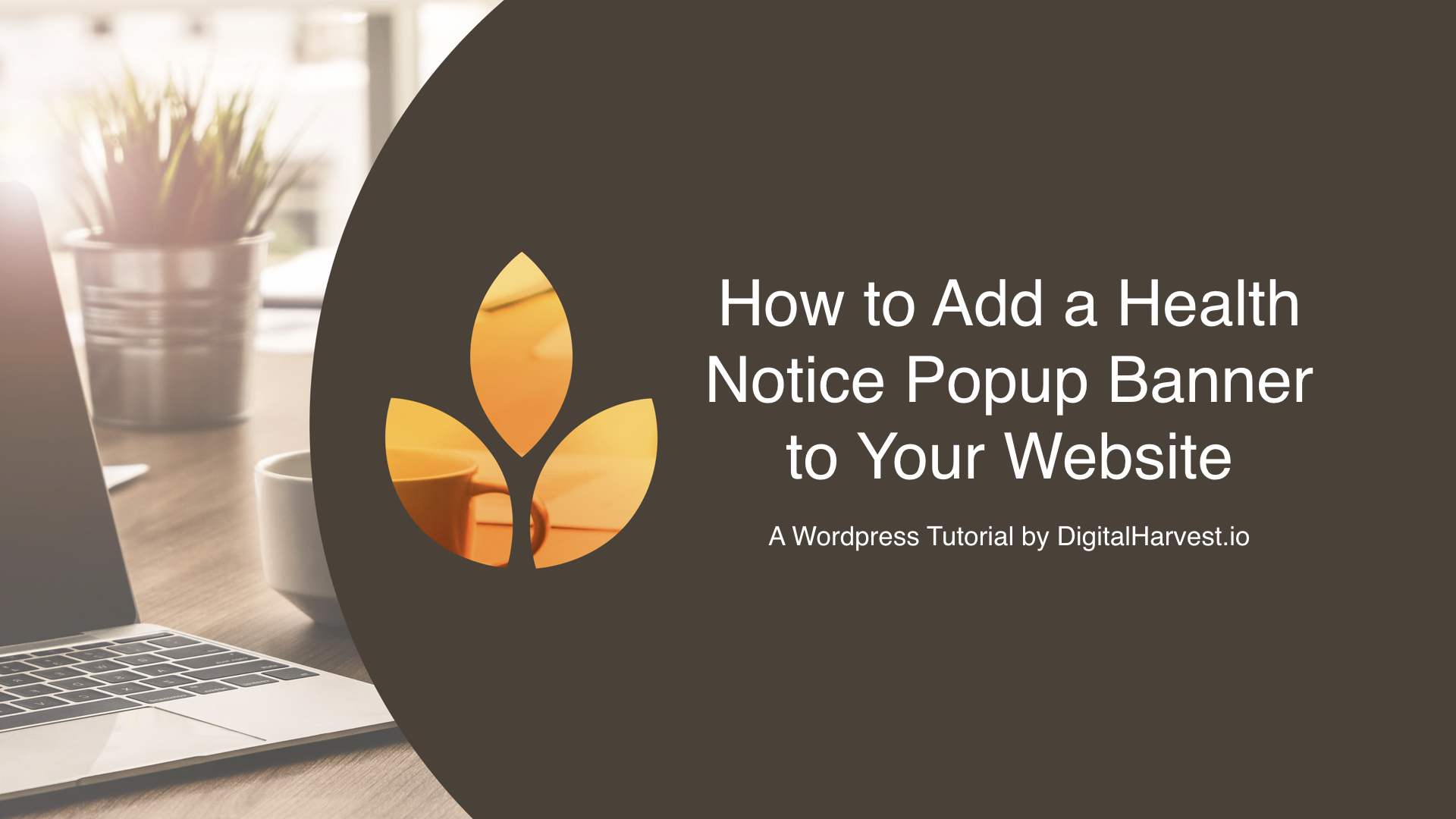 Adding A Health Notification Popup Banner To Your Wordpress Website During Covid 19 Panic